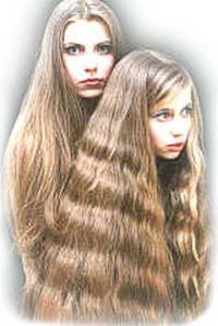 Волосы на голове и лобке у блондинок одинаковые